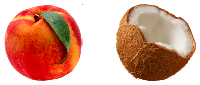 Building Relationships Across Cultures: Are You a Peach or a Coconut?