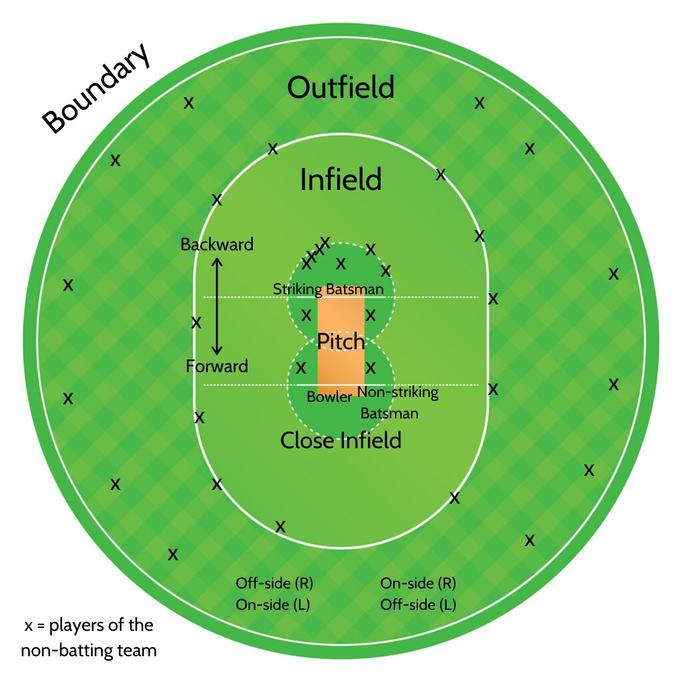 Sports-Cricket-Outfield