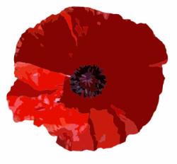 Australia - Poppy - ANZAC Day
